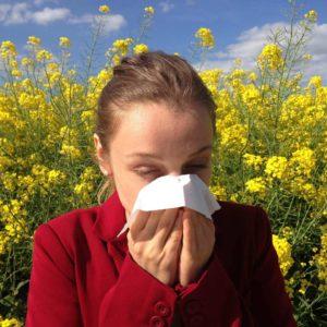 Hanf - der Allergiker-Freund